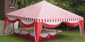 Cheap Pyramid Canopy Rental Service